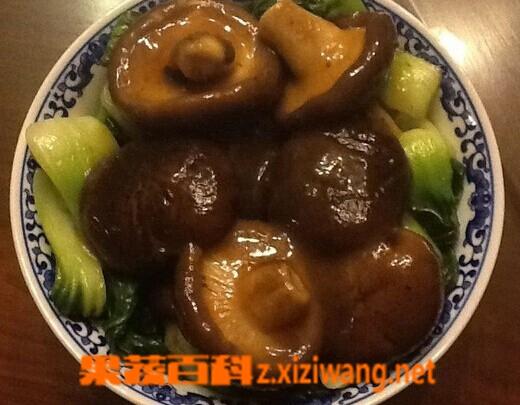 果蔬百科香菇